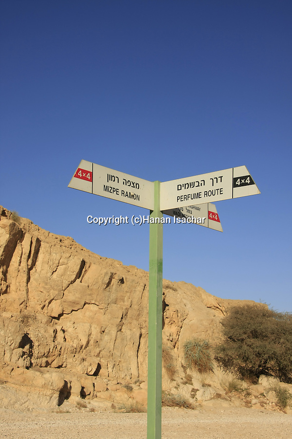 Israel, Negev, Wadi Nekarot on the ancient Incense Route, a World Heritage Site