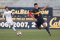 BERKELEY, CA - October 13, 2016: Javier Macias chases a loose ball. Cal played UCLA at Edwards Stadium.
