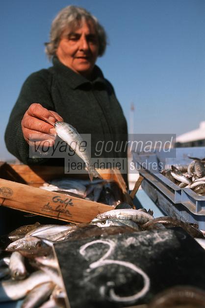 Europe/France/Provence-Alpes-Côte d'Azur/13/Bouches-du-Rhône/Marseille: le Vieux Port Marché aux poissons - quai des Belges [Non destiné à un usage publicitaire - Not intended for an advertising use]