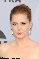 LOS ANGELES - JAN 27:  Amy Adams at the 25th Annual Screen Actors Guild Awards at the Shrine Auditorium on January 27, 2019 in Los Angeles, CA