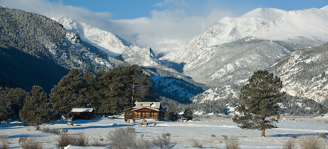 Winter scenic with snowcapped peaks above American elk (Cervus elaphus), or wapiti, and cabin in Moraine Park, Rocky Mountain National Park, Colorado, USA