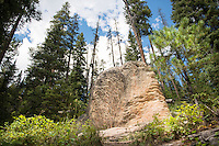 History Rock rises from the forest floor in Hyalite Canyon south of Bozeman, Montana.