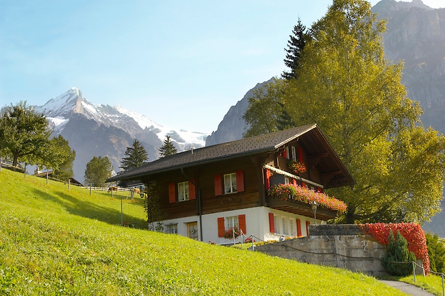 Typical Wooden Swiss House in alpine pastures - Grinderwald - Alps - Switzerland