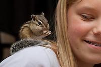 Streifenhörnchen als Haustier klettert auf Mädchen, Kind herum, Asiatisches Streifenhörnchen, Östliches Streifenhörnchen, Backenhörnchen, Burunduk, Eutamias sibiricus, Tamias sibiricus, Siberian chipmunk