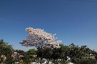 SAO PAULO 10.09.2014 CLIMA TEMPO - O céu na zona sul de São Paulo permanece sem chuva e com temperaturas superiores a 22 graus na manha desta quarta-feira (10). A Umidade do ar está em 41%.<br /> (Foto: Fabricio Bomjardim / Brazil Photo Press)