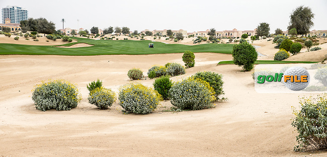 18th fairway at The Els Club , Dubai, United Arab Emirates.  28/01/2016. Picture: Golffile | David Lloyd<br /> <br /> All photos usage must carry mandatory copyright credit (&copy; Golffile | David Lloyd)