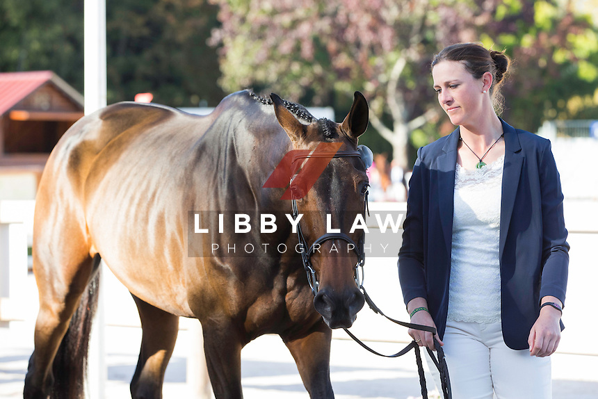 USA-Lauren Kieffer (VERONICA) CCI4* FIRST HORSE INSPECTION: 2014 FRA-Les Etoilles de Pau (Wednesday 22 October) CREDIT: Libby Law COPYRIGHT: LIBBY LAW PHOTOGRAPHY - NZL
