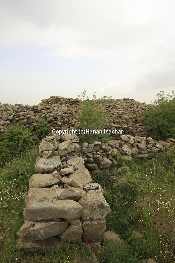 Rujum el-Hiri, a megalithic site in the Golan Heights