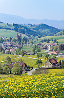 Germany, Baden-Wurttemberg, Breisgau-Hochschwarzwald: landscape at Black Forest, village St. Peter with former monastery church St. Peter and Paul at background | Deutschland, Baden-Wuerttemberg, Breisgau-Hochschwarzwald: Landschaft im Hochschwarzwald, im Hintergrund Ort St. Peter und ehemalige Klosterkirche St. Peter und Paul