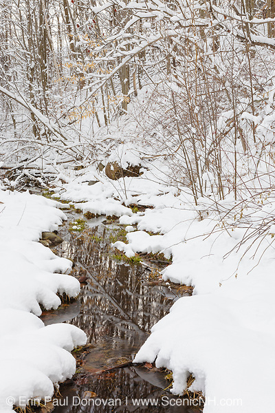 Small brook in Lincoln, New Hampshire USA after a snow storm