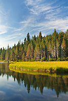 The Truckee River flows peacefully towards Lake Tahoe in Placer County, California