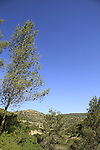 Israel, Jerusalem mountains, a view of Nahal Sorek