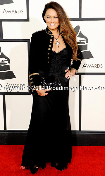 Pictured: Tia Carrere<br /> Mandatory Credit &copy; Adhemar Sburlati/Broadimage<br /> The Grammy Awards  2014 - Arrivals<br /> <br /> 1/26/14, Los Angeles, California, United States of America<br /> <br /> Broadimage Newswire<br /> Los Angeles 1+  (310) 301-1027<br /> New York      1+  (646) 827-9134<br /> sales@broadimage.com<br /> http://www.broadimage.com