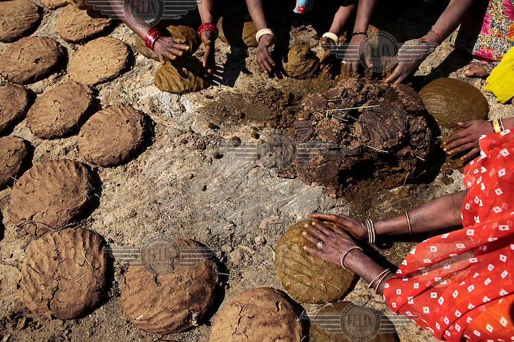 Women have collected buffalo dung and turn it into pancakes in order to dry it and then use it as a fuel for cooking. .