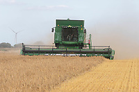Harvesting oats in the Lincolnshire fens <br /> &copy;Tim Scrivener Photographer 07850 303986<br />      ....Covering Agriculture In The UK....