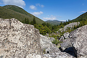 Zealand Notch from Zeacliff Trail in the White Mountains, New Hampshire during the summer months. Zeacliff Mountain is on the left. This area was part of the Zealand Valley Railroad, a logging railroad in operation from 1885-1897.