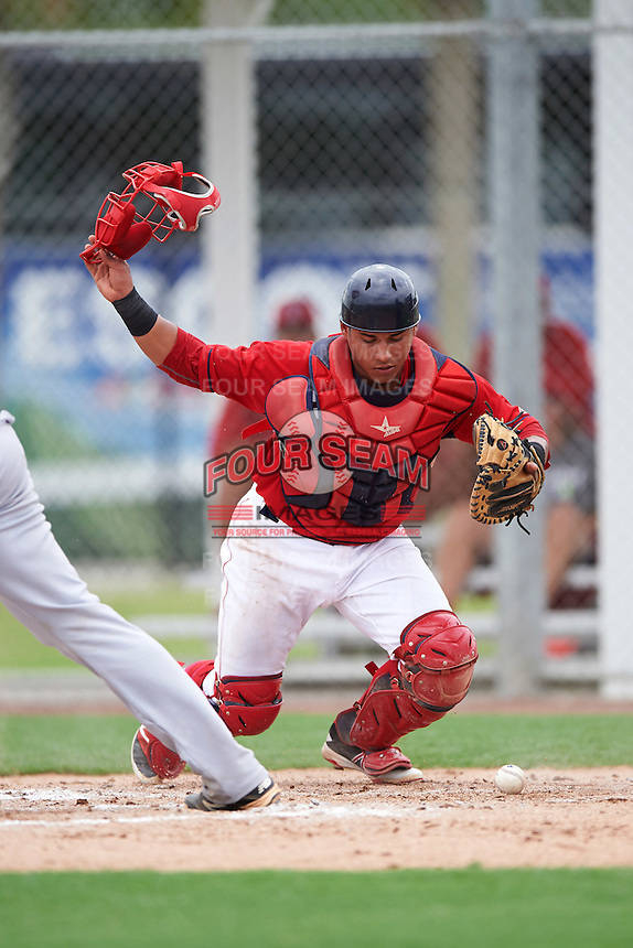 GCL Red Sox catcher Alberto Schmidt (41) during the second game of a doubleheader against the GCL Rays on August 9, 2016 at JetBlue Park in Fort Myers, Florida.  GCL Rays defeated GCL Red Sox 9-1.  (Mike Janes/Four Seam Images)