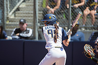 Cal Softball vs OSU, May 13, 2017