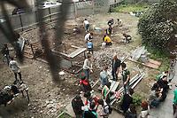 Milano: il collettivo Macao occupa la torre Galfa per farne un centro culturale. Nella foto i ragazzi ripuliscono lo spazio antistante per farne un giardino.