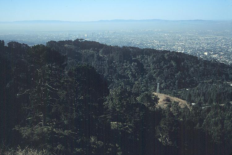 Power lines in the Berkeley hills.