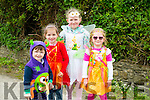l-r  Eanna Murphy, Ciara O'Connell, Aoife O'Connell and Avla Murphy at Kilflynn Enchanted Fairy Festival on Sunday