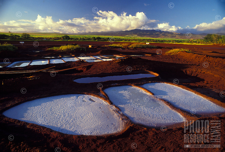 Hanapepe Salt Ponds, south Kauai, where salt is made in traditional way by Hawaiian families.