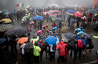 Maglia Rosa / overall leader Richard Carapaz (ECU/Movistar) followed closely by Vincenzo Nibali (ITA/Bahrain-Merida) up the extremely wet, cold & misty Cole di Mortirolo <br /> <br /> Stage 16: Lovere to Ponte di Legno (194km)<br /> 102nd Giro d'Italia 2019<br /> <br /> ©kramon
