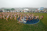 21 NOV 2011: The women's field crosses the ncaa logo during the Division I Women's Cross Country Championship held at the Wabash Valley Family Sports Center in Terre Haute, IN. Georgetown University won the team national title. Brett Wilhelm/NCAA Photos.