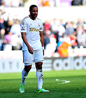 sport...swansea v southampton...liberty stadium...saturday 20th april 2013....<br /> <br /> <br /> Swansea's Ashley Williams leaving the pitch after drawing to Southampton 0-0