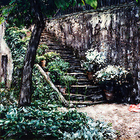 Stone stairs in the Boboli Gardens are adorned with pots, plants and flowers.<br />