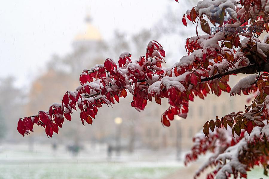 November 11, 2019; First snowfall of winter 2019-20. (Photo by Matt Cashore/University of Notre Dame)