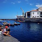 Fishing in Puerto de la Cruz harbour . Boat host and customs house in the background.Puerto de la Cruz.Tenerife,Canary Islands,Spain