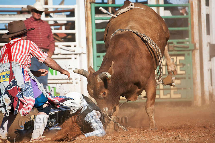 A bull rider is thrown from his bull.  Mareeba Rodeo, Mareeba, Queensland, Australia