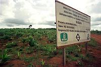 Placa de projeto aprovado pela Sudam, com suspeita de irregularidade.<br />Altamira, Pará, Brasil.<br />21/03/2001<br />Paulo Santos/Interfoto
