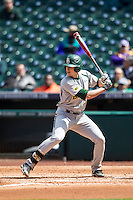 Baylor Bears first baseman Aaron Dodson (19) at bat during Houston College Classic against the Hawaii Rainbow Warriors on March 6, 2015 at Minute Maid Park in Houston, Texas. Hawaii defeated Baylor 2-1. (Andrew Woolley/Four Seam Images)