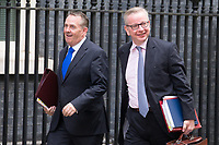International Trade Secretary Liam Fox and Secretary of State for Environment, Food and Rural Affairs Michael Gove arrive for the cabinet meeting at 10 Downing street