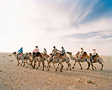 MONGOLIA, Nemegt Basin, a group of riders trek through the Gobi Desert on camelback