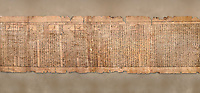 "Ancient Egyptian Book of the Dead papyrus - Spell 81a assuming the form of a lotus associated with the sun god, Iufankh's Book of the Dead, Ptolemaic period (332-30BC).Turin Egyptian Museum. <br /> <br /> The spell reads "" I am a pure lotus that has ascended by the Sinlight and ia at Ra's nose. I spend my time shedding it on Horus. I am the pure lotus that ascended from the field"". <br /> <br /> The translation of  Iuefankh's Book of the Dead papyrus by Richard Lepsius marked a truning point in the studies of ancient Egyptian funereal studies."