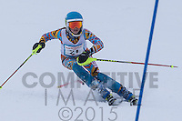 2015 Section 6 Alpine Ski Meet AM Run