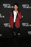BUENA PARK, CA - SEPTEMBER 29: Dominique Columbus, at Knott's Scary Farm & Instagram's Celebrity Night at Knott's Berry Farm in Buena Park, California on September 29, 2017. Credit: Faye Sadou/MediaPunch