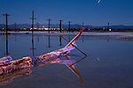 A fallen salt encrusted power pole rots in the mud flats on the shores of the Salton Sea near Niland, California