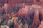 Hoodoos in Bryce Canyon Bryce Canyon National Park, UTAH