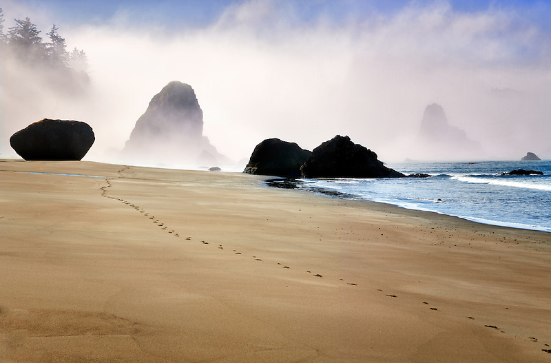 Fog and footprints  at Port Orford beach. Oregon