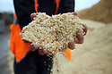 TO GO WITH STORY BY Arthur Beesley. DATE 8 FEB 2018. The wood chip & sawdust mix which is turned into wood pellets at Balcas Timber Ltd,  Laragh, Ballinamallard, Enniskillen Co. Fermanagh, Northern Ireland. Photo/Paul McErlane