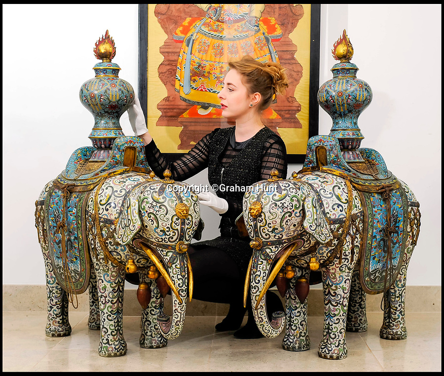 BNPS.co.uk (01202 558833)<br /> Pic: Graham Hunt/BNPS<br /> <br /> Ker-Qing! ...Auctioneer Monika Wilk with a pair of 19th century ornate chinese elephants for sale in Dorset.<br /> <br /> The large pair of caparisoned cloisonne elephants from the much sought after Qing Dynasty are being sold at Dukes Auctioneers in Dorchester, Dorset - but you will need a jumbo sized bank account for the £40,000 estimate.