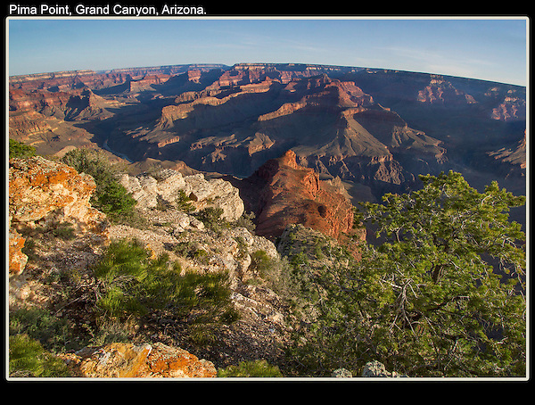 Photoshop. Fish-eye perspective and juniper tree added. Grand Canyon.