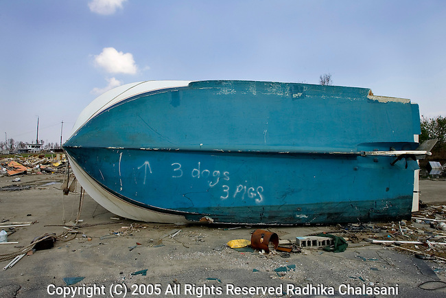 Empire, Louisiana-September 28: Writing on the hull of a boat September 28, 2005 in Empire indicates that rescue workers found 3 dogs and three pigs inside the overturned boat after Hurricane Katrina struck the Gulf Coast. The abandoned town and its port were destroyed by Katrina and cut off from the outside world by flooding from Hurricane Rita. (Photo By Radhika Chalasani)