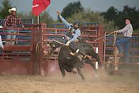 SEBRA - Fishersville, VA - 8.6.2015 - Bulls & Action
