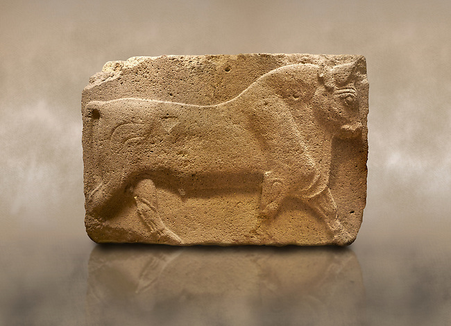 Photo of Phrygian relief sculpted orthostat stone panel, 1200-700 B.C. Anatolian Civilisations Museum, Ankara, Turkey. Figure of a walking bull. <br /> <br /> Against a brown art background.