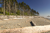 On the Coast of the Olympic Peninsula in Washington State